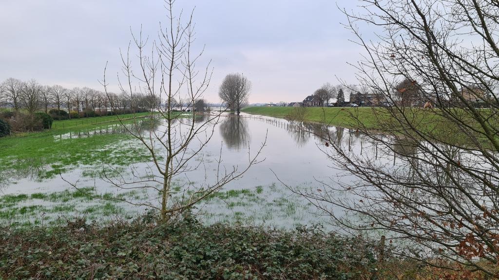 <p>De uiterwaarden rondom het stuwencomplex lopen langzaam maar zeker vol water</p> <p>Wilco Willemse</p> © BDU