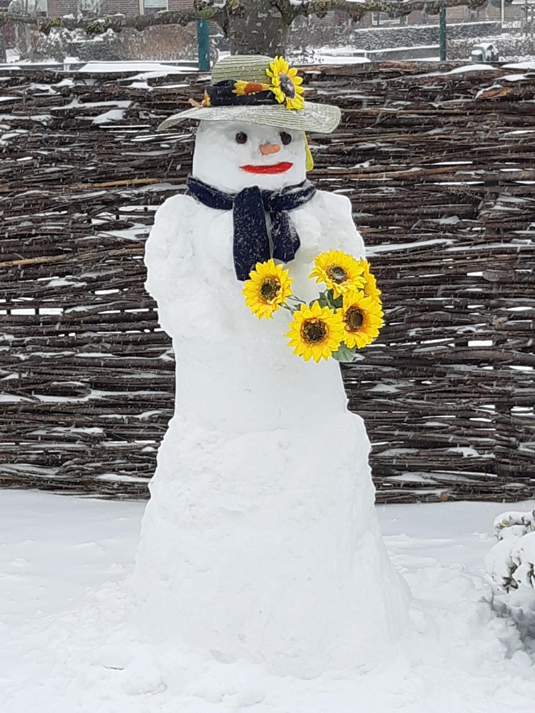 <p>De enige echte Zonnebloem Sneeuwpop in Achterveld. Kou en wind getrotseerd en daar staat ze dan.</p> Zonnebloem Afdeling Achterveld © BDU media