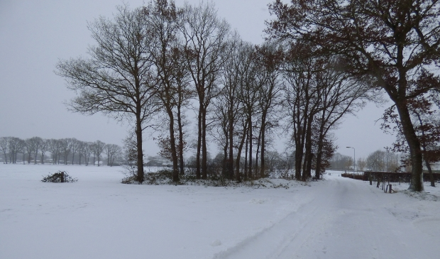 <p>Winterlandschap in het buitengebied van Putten.</p>