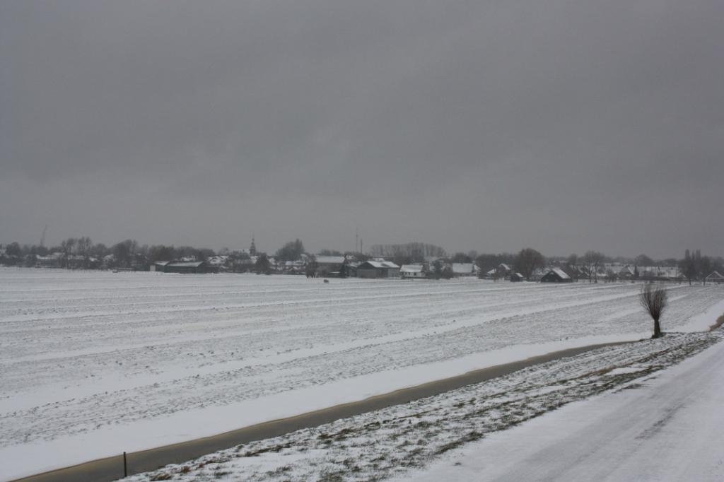 Hveld in de sneeuw J. Jansen © BDU media