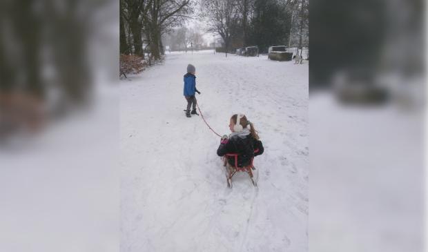 Maaike en Maarten, kinderen van dominee Bertie Boersma veilig op weg in de sneeuw.