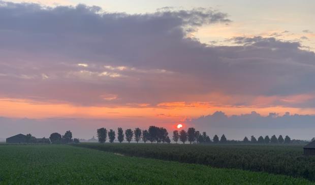 zonsopgang in 't Goy