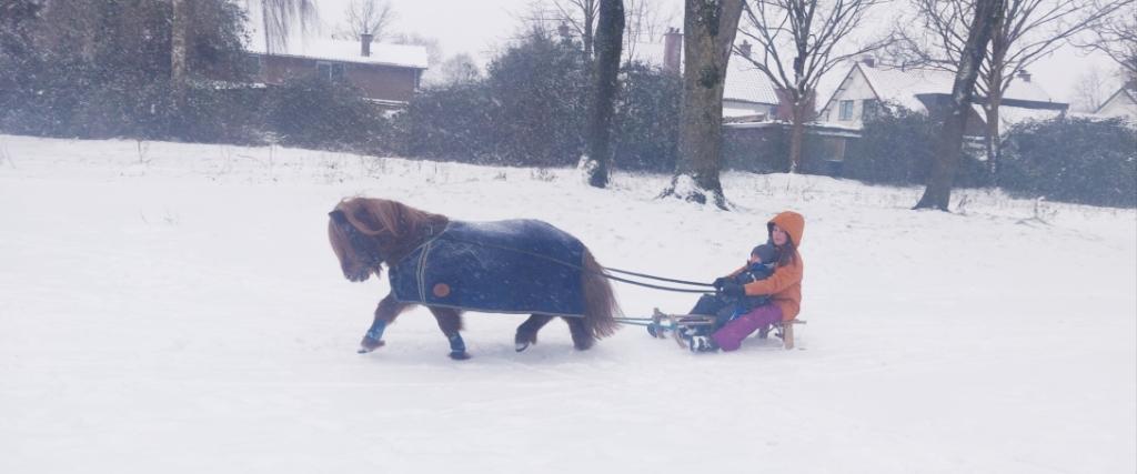 """,,Wat is het toch genieten van de sneeuw. Gewoon genieten en niet stil staan bij alles wat er nu aan de hand is. Wij zijn lekker wezen sleeën met onze pony, op het veldje waar de Klimrakker vroeger stond. Laten we hopen dat we nog lang van dat veldje mogen genieten."""" Tamara van der Heijden © BDU media"""