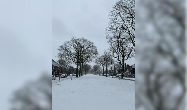 Haarsekade met sneeuw