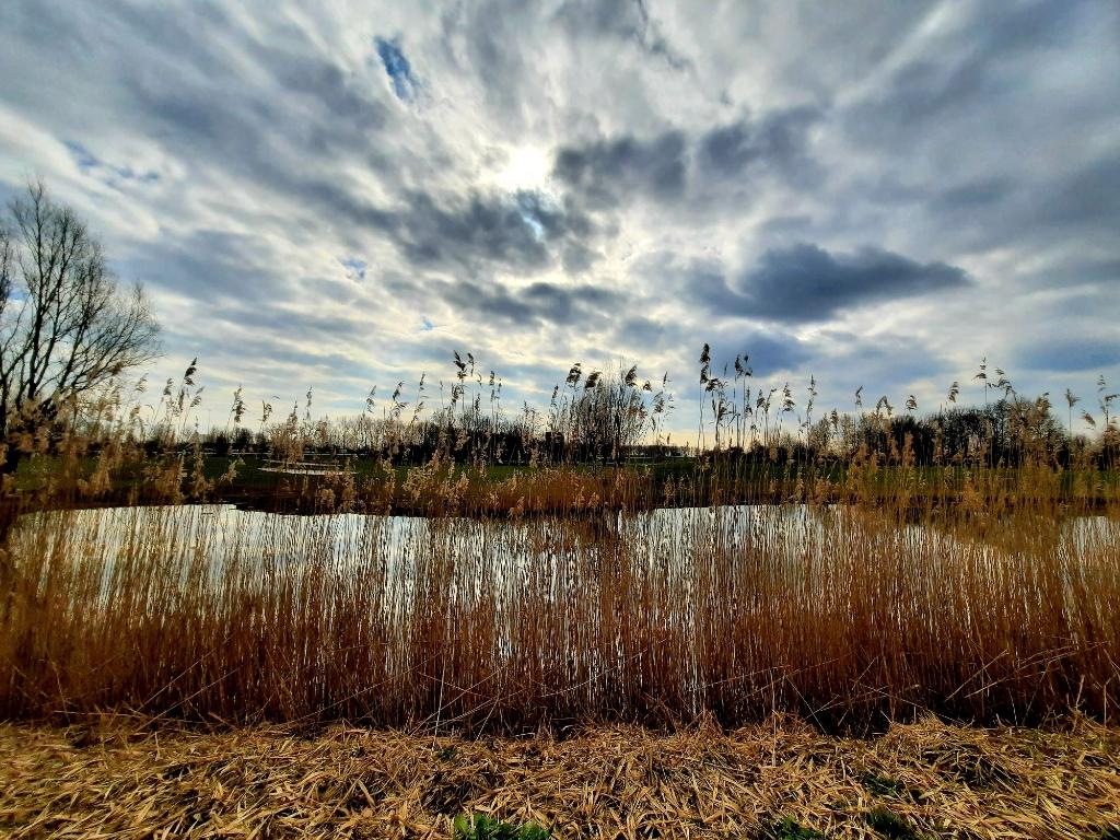 <p>Het licht en de wolken zorgen voor een fascinerend schouwspel. </p> <p>Petra Verhooren </p> © BDU media