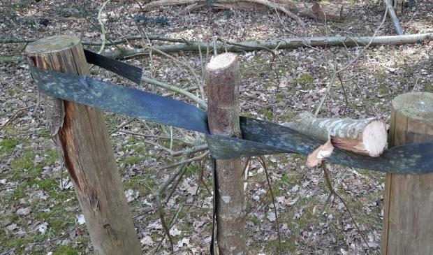 doorgezaagde boom