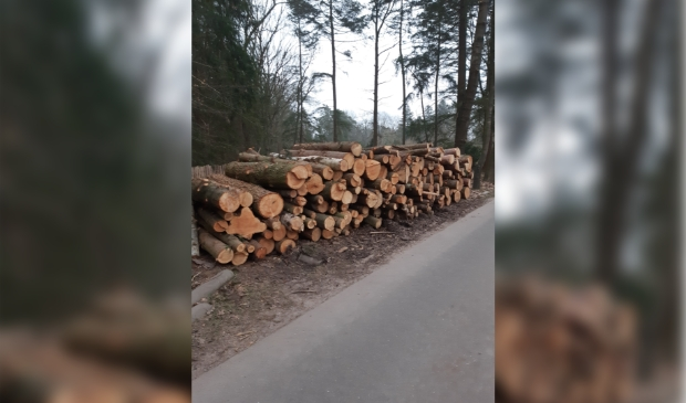 Deel bomenkap europarcs