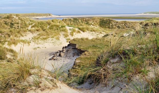 <p>Stichting Duinbehoud wil graag weten hoe belangrijk de duinen zijn voor recreanten en inwoners.</p>