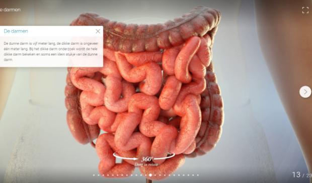 Patiënten die een coloscopie krijgen in Meander, ontvangen van te voren een digitale voorlichting op maat