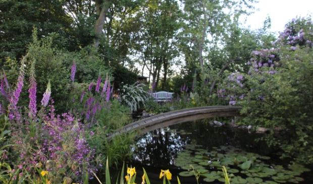 Waterbeheer in de tuin