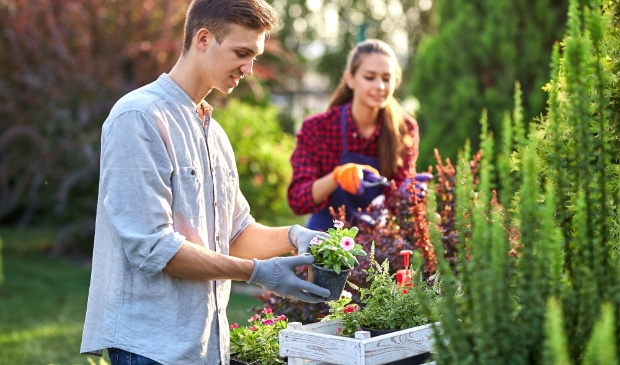 <p>Inwoners uit Putten kunnen subsidie aanvragen voor het aanpassen van hun tuin, om die zo beter bestand te maken tegen droogte, hitte en hoosbuien.</p>