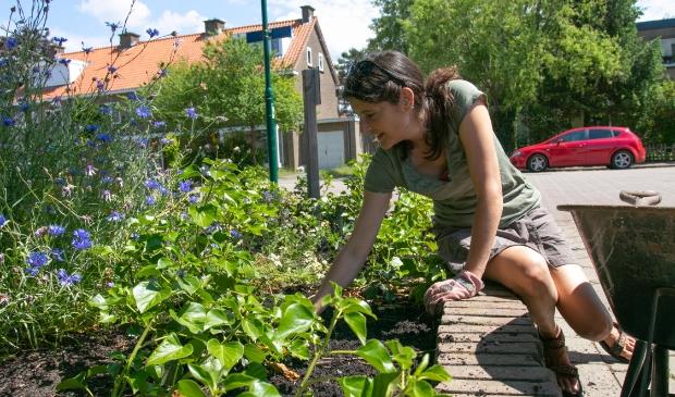 <p>Cerian van Gestel druk aan het tuinen&nbsp;</p>