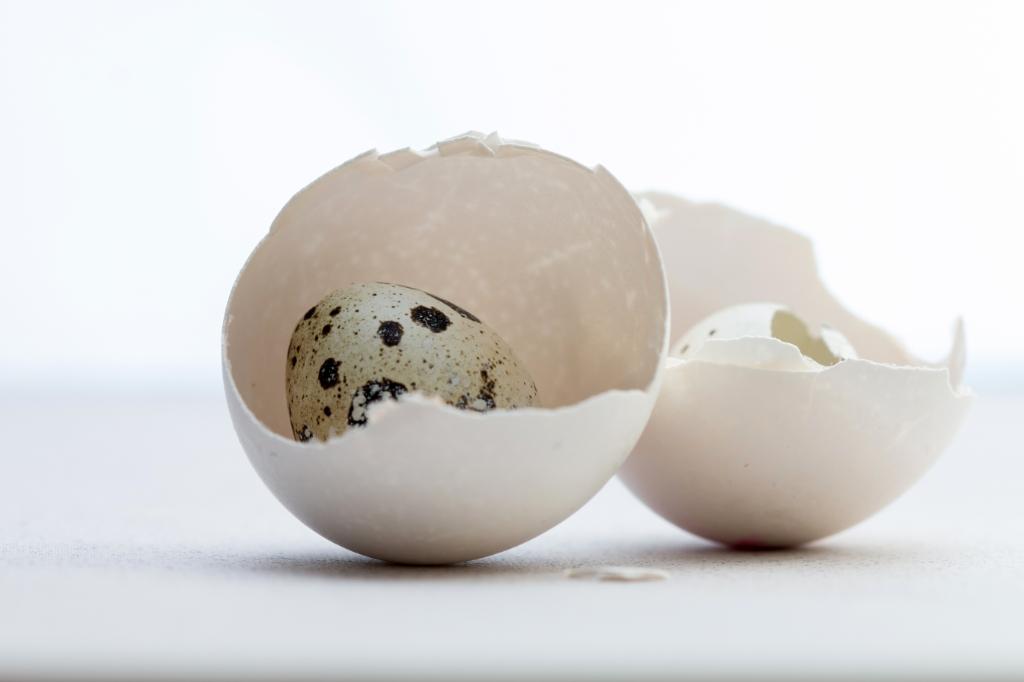 Pasen met eieren en eitjes Karin Zitzmann © BDU