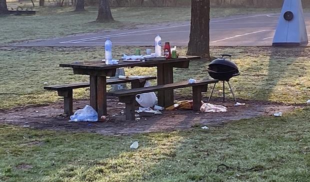 picknickplaats in het Haarlemmerbos. De volgende ochtend.