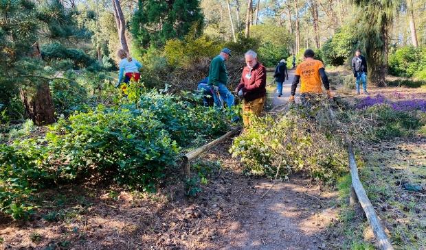 Vrijwilligers aan de slag in de Heidetuin