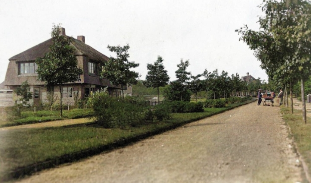 <p>De Vondellaan in 1925.&nbsp;</p>