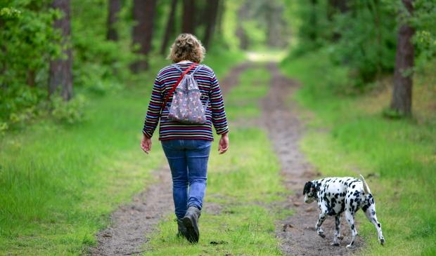 Prikkelarme rustmomenten en wandelingen dragen bij aan herstel na een COVID-19 besmetting.