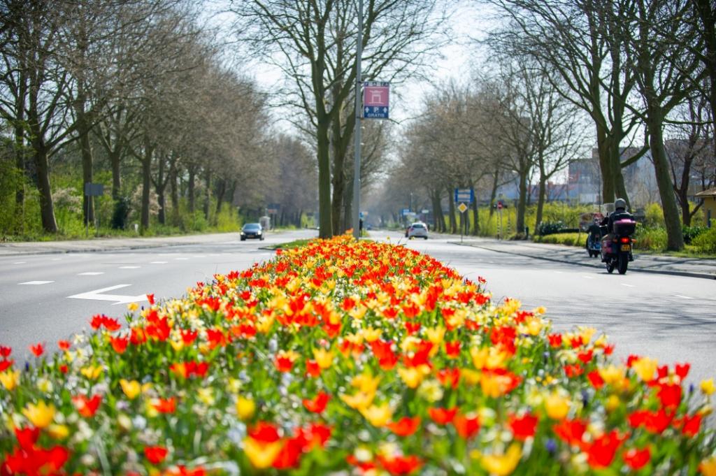 Kleurrijk Gorinchem Theo Bos © BDU Media