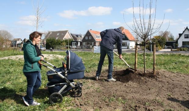 <p>E&eacute;n boom is door een jong Rijsenhouts gezin met baby geplant en geadopteerd</p>