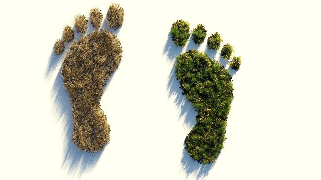 Hoe groot is jouw voetafdruk? Meet het, weet het en win een waardebon! Pixabay CC © BDU media