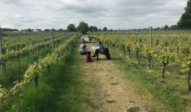 <p>Champagne-ontbijt in wijngaard de Amsteltuin tijdenws de vorige editie van &#39;24H Amstelveen&#39;.</p>