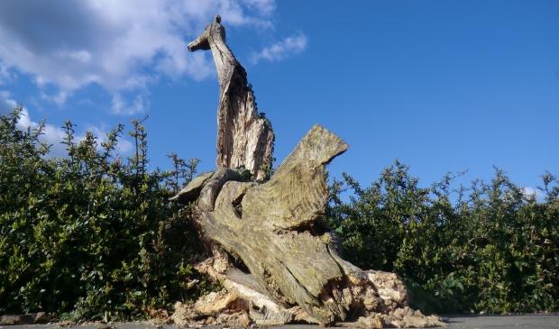 Omgevallen stuk boom.
