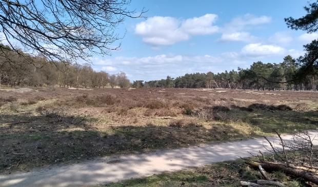 <p>De gemeente heeft 2500 hectare bos en natuur in eigen beheer.</p>