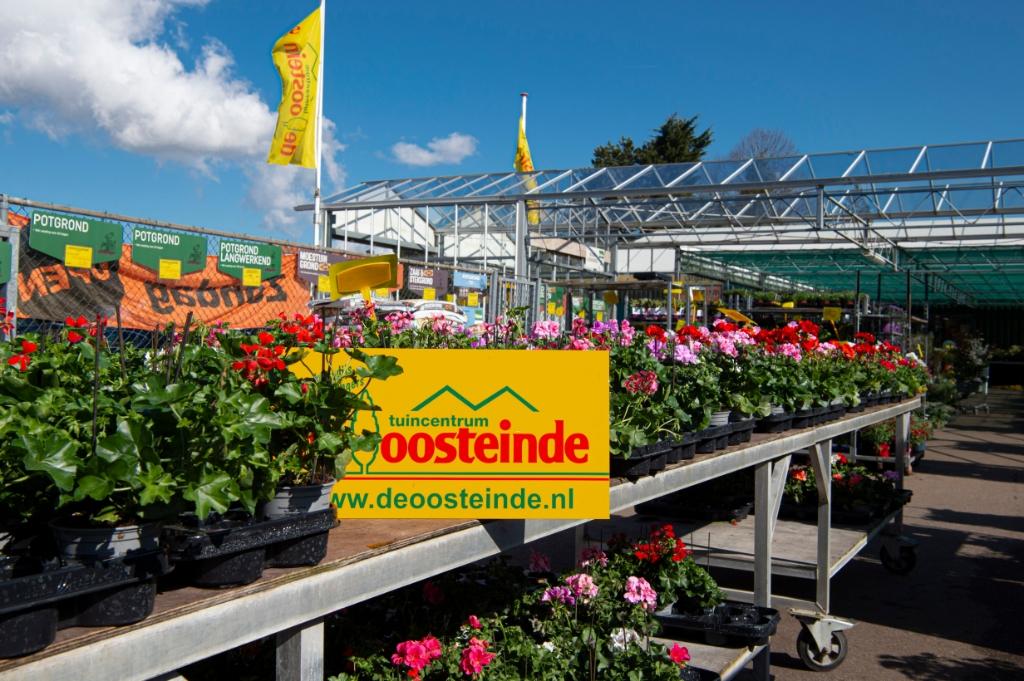 Er is volop keuze om de tuin, het balkon of terras op te fleuren Ellen Toledo © BDU media