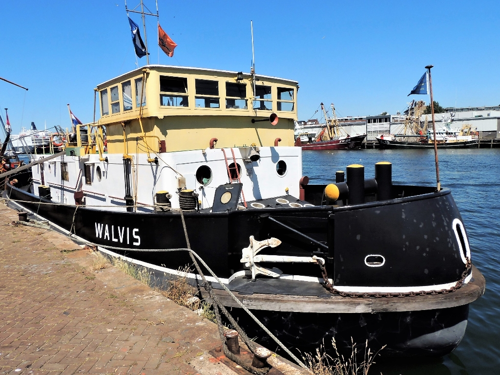 Walvis Hans Blomvliet © BDU media