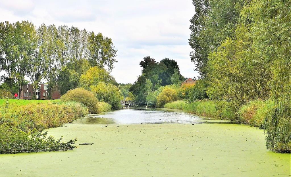 <p>Inundatiekanaal Vaartse Rijnpad</p> Kees Volkers © BDU media