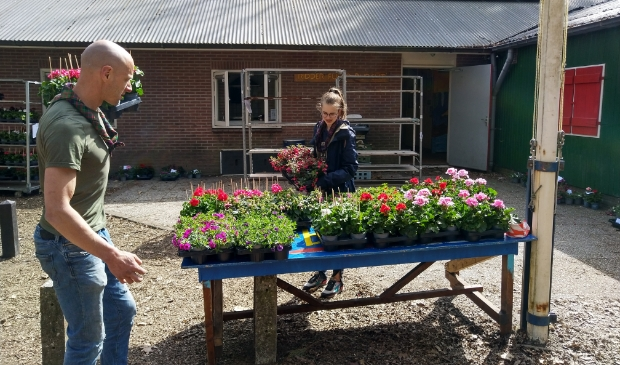 De planten worden klaargezet bij het scoutinggebouw