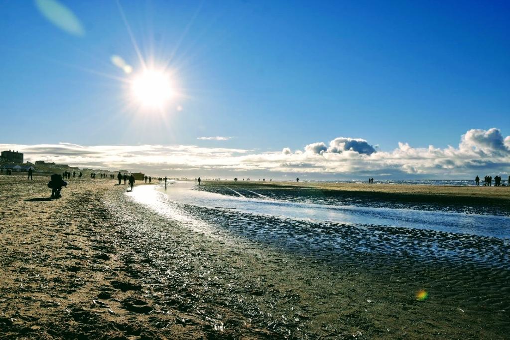 <p>Zandvoort is en blijft een populaire reisbestemming.</p>