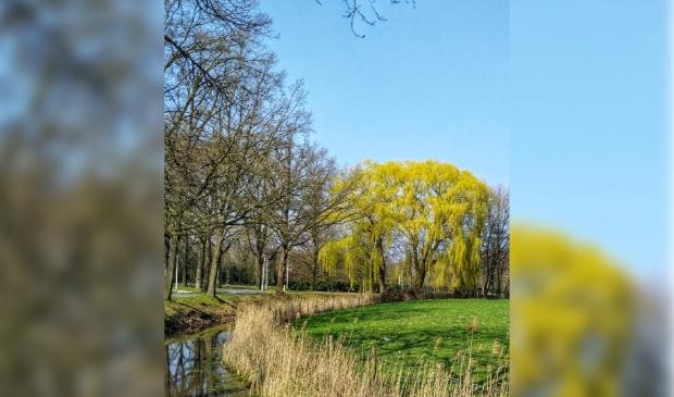 park Schothorst