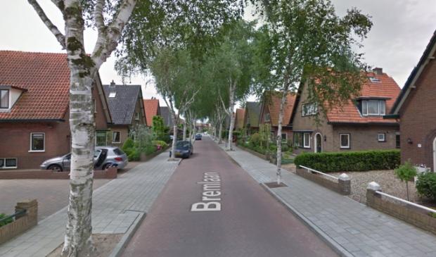 <p>Bewoners van de Bremlaan willen hun woonomgeving een mooie groene invulling geven met behulp van Ede Doet.</p>