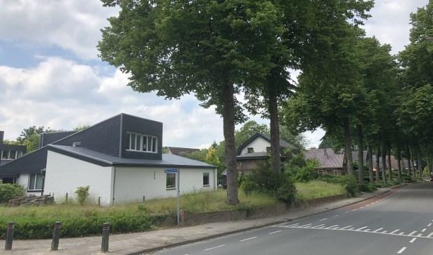 <p>De twee betwiste lindebomen, die zaterdag zijn omgezaagd.</p>
