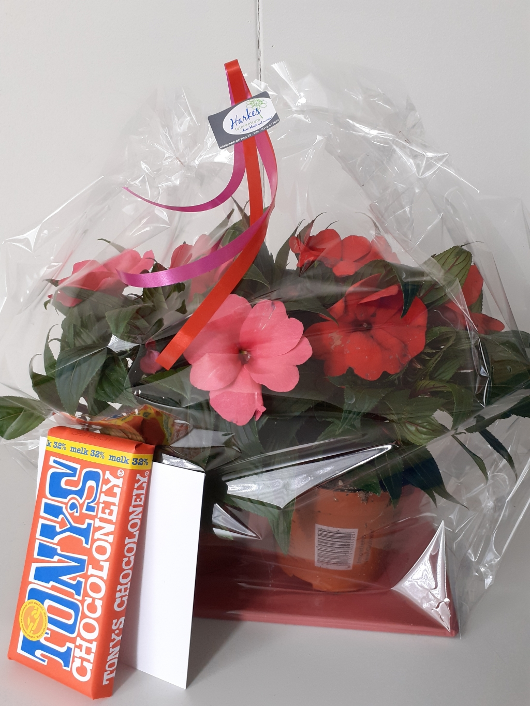 Een plantje met kaartje, zoals bezorgd bij een moeder Thomas Steenbergen © BDU Media