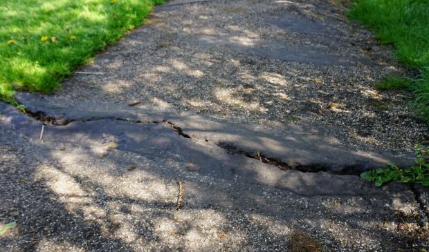 <p>Een van de hobbelige voetpaden in Amstelveen</p>