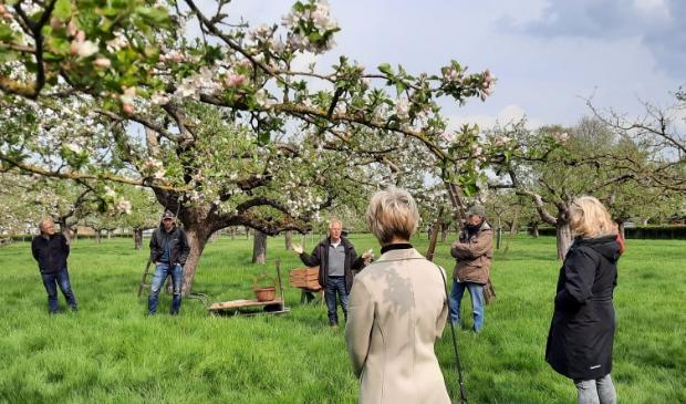 Genieten in de bloeiende boomgaard