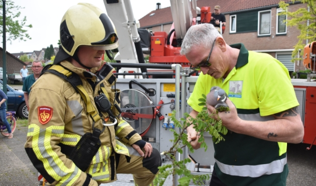 <p>De duif wordt door een brandweerman overgedragen aan de dierenambulance.</p>