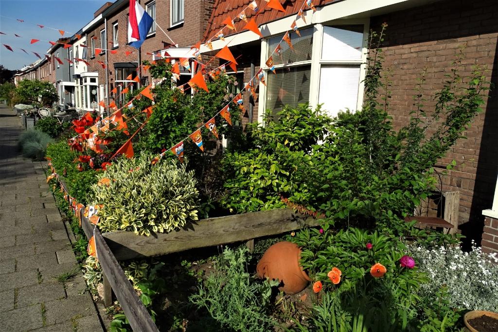 Oranje Hans Blomvliet © BDU media