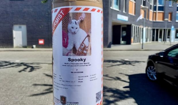 Spooky wordt vermist sinds 15 mei van dit jaar.