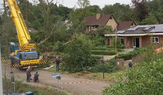 storm in Leersum velt veel bomen