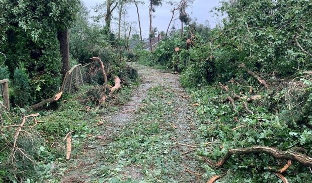 Omgevallen bomen in Leersum