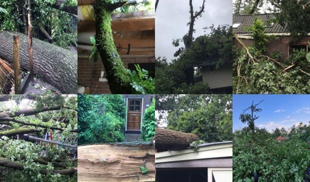 <p>Het huis en de tuin met atelier van Cocky Kok en Atie Stienstra werden zwaar getroffen. </p>