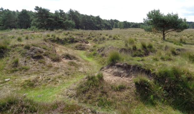 loopgraven Breeveen