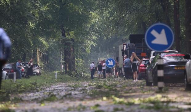 De storm van vrijdagmiddag heeft een ravage achtergelaten in Leersum.