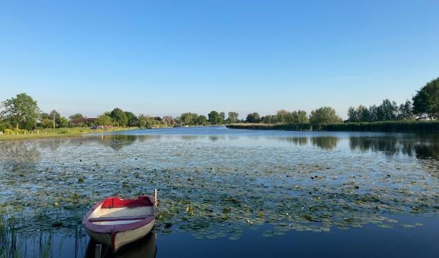 Waterlelies en een strakblauwe lucht vanaf de Holendrechterweg