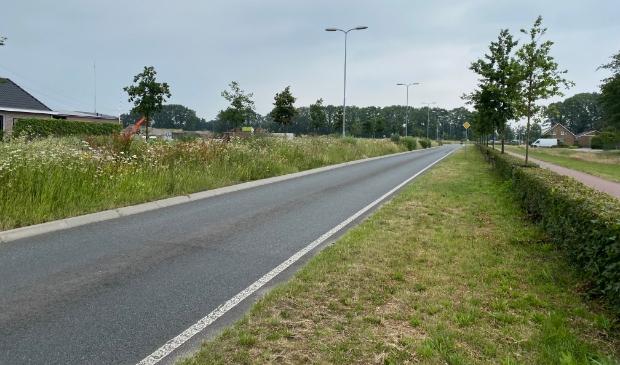 <p>Het plangebied voor Henslare wordt begrensd door de Stationsstraat, Henslare, Nijkerkerstraat, Arkemheenseweg en de spoorlijn.</p>