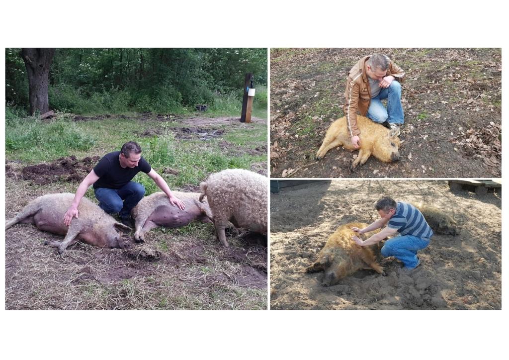 Kim Cornelisse was een van de fotografen die vermeld werd. Zij zond drie foto's in waarbij de band tussen dier en mens mooi naar voren kwam.  Kim Cornelisse © BDU Media