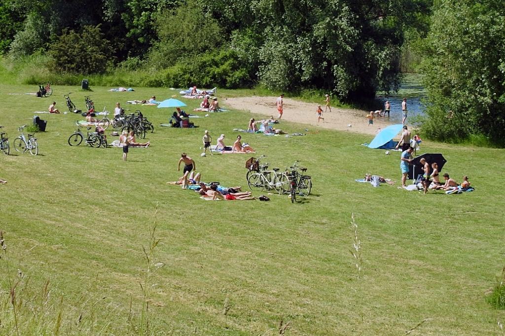 zwemmen,dalemse wiel,zomer GP-buro © BDU Media